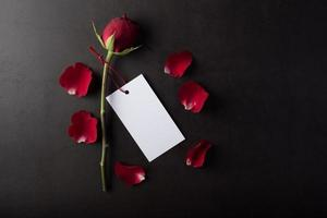 röd ros med vitt kort. foto