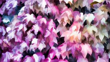 rosa färgade löv av höstens höstbakgrund, höstens färger foto