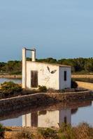ses salines naturpark på ön formentera i Spanien. foto
