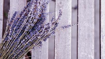 torkade lavendelklasar på träbord foto