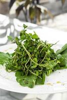 enkel färsk ekologisk vattenkrasse och spenat gröna blad sallad på tallrik foto