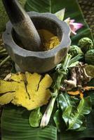naturliga exotiska tropiska ekologiska produkter detalj i asiatisk skönhet spa foto