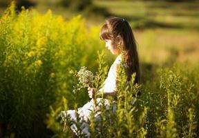 flicka som plockar blommor på ett fält foto