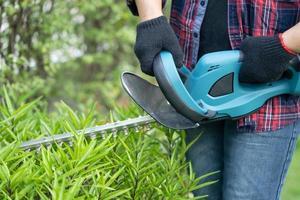 trädgårdsmästare som håller den elektriska häcksaxen för att skära trädtoppen i trädgården. foto