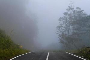 väg i den dimmiga skogen i Sarawak, Malaysia foto