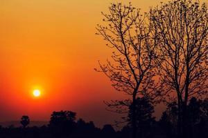 silhuett av träd vid vacker soluppgång på landsbygden i Thailand foto