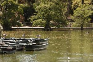 båtar vid edge lake park foto