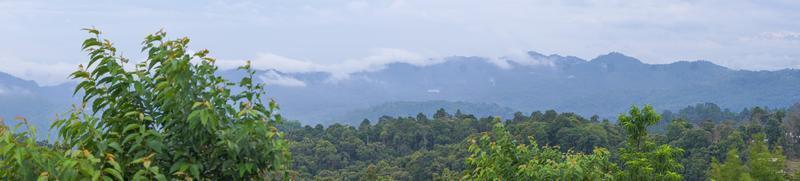 panorama, dimma på berget bakom den gröna skogen foto