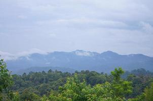 dimma på berget bakom den gröna skogen foto