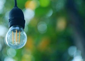 små lampor mot bakgrunden av bokehträd foto