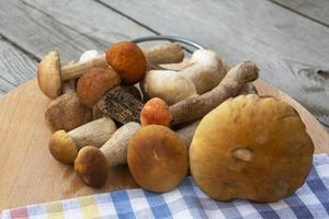 ett gäng svamp. porcini svamp ligger på en skärbräda. foto