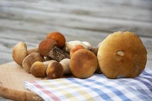porcini svamp ligger på en skärbräda. ätliga svampar foto