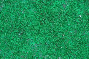 ovanifrån av grönt gräs och gräs mark och gräs fält foto