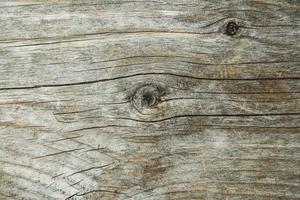 strukturen på den gamla brädan. yta med sprickor och knutar foto