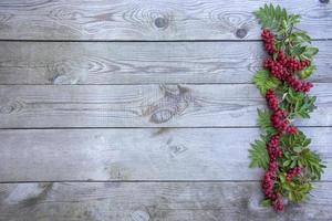 kvistar med rönnbär foto