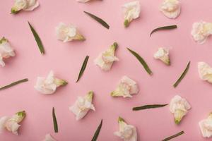 platt låg vackra komposition blommor foto