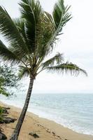 hisnande hawaii landskap med blått hav foto