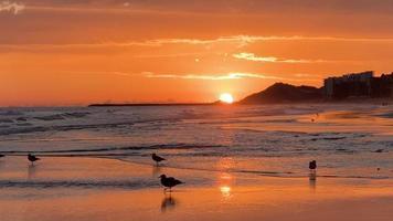 strand solig molnig solnedgång med lägenheter foto