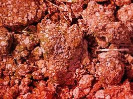röd jordstruktur foto