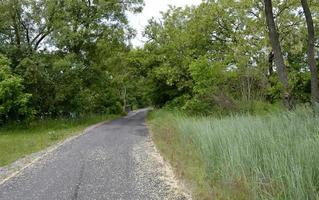 tom asfaltväg foto