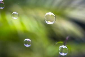 vattenbubblor flyter och faller på gröna blad foto