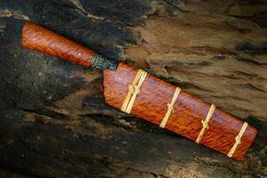 kniv anpassad eller enep i det naturliga träskalet handgjort i thailand foto