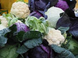kålgrönsak, vegetarisk och vegansk mat foto