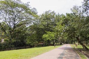 vacker promenadväg i perdana botaniska trädgårdar kuala lumpur. foto