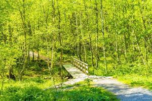 liten träbro och gångväg över floden Hemsedal Norge. foto