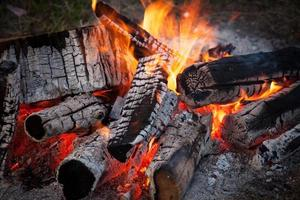 brinnande eld av stockar foto