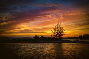 vackert landskap av solnedgång över havet med siluetträd foto