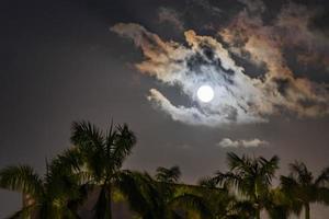 underbar dramatisk fullmåne med moln bakom handflatorna playa mexico. foto