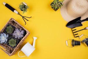 platta trädgårdsredskap och korg med växter foto