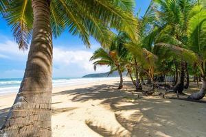 phuket karon beach sommarstrand med palmer foto