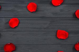 röda rosenblad på träbakgrund. foto