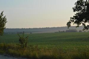 panorama över området i byn foto