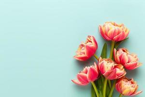 vårblommor, tulpaner på pastellfärger bakgrund. retro vintage stil. foto