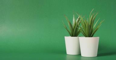två konstgjorda kaktus- eller plastväxter eller falska träd på grön bakgrund. inga människor foto