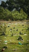 sopor vid floden - skräp på flodstränder foto