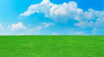 fält på en bakgrund med blå himmel och moln. foto