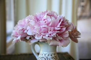 blommande rosa blomma i en vas på en veranda foto