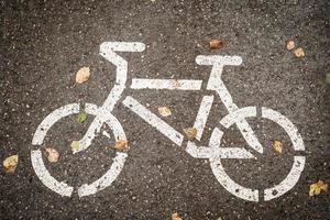 cykelbaneskylt på asfalten med gula blad foto