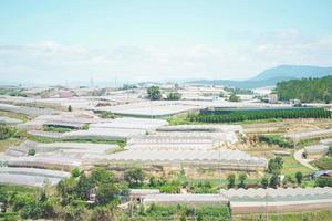 vy över många växthus i dalat, vietnam. dalats grönsaksodlingar foto