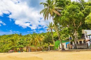 stora tropiska ön ilha grande praia de palmas beach brazil. foto