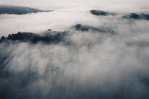 hög vinkel över skogen och dimma på morgonen foto