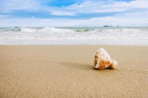 plastskräp på stranden. hanterat plastavfall är den allvarligaste källan till föroreningar i havet. bild med kopieringsutrymme och för earth day -koncept. foto