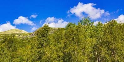 berg och skog landskap panorama på solig dag vang norge foto