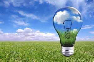 glödlampa i naturlandskap foto