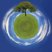 gräsplanet och träd som går grönt koncept foto