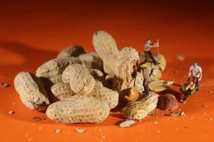 plastmänniskor som arbetar med jordnötter foto